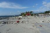 Tsunami waves swept away houses and shops
