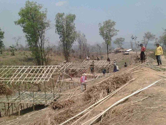Building bamboo huts as temporary shelters